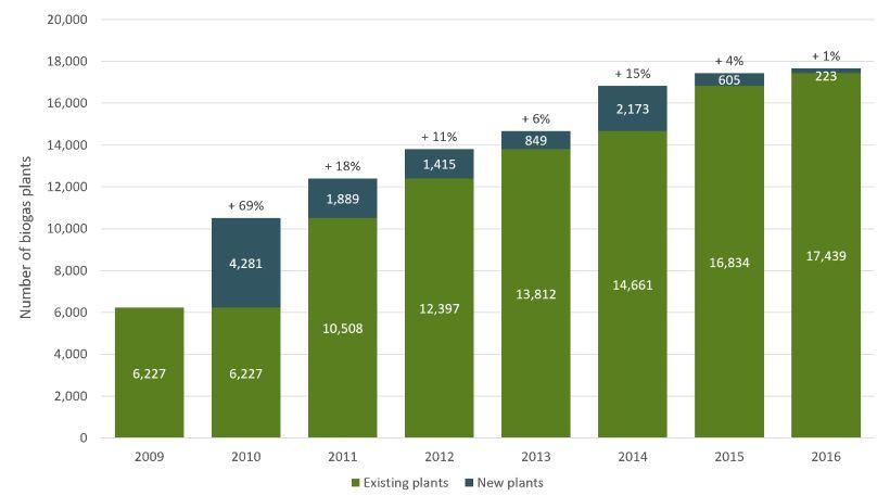 ClimeCo International | Biogas & renewable energy at palm